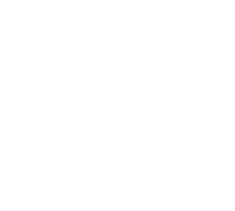 Majestic Memories